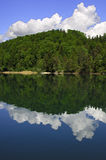 Clouds reflecting in a forest lake Royalty Free Stock Photo
