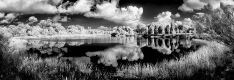 Clouds reflecting in pond Royalty Free Stock Images