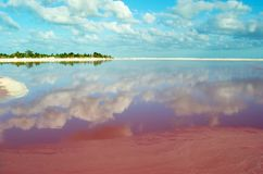 Pink lake in Mexico stock images