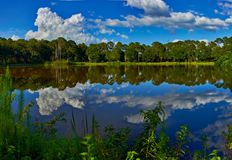 Clouds reflecting from water in park in Florida. Clouds reflecting from the water in a park in Florida Stock Images