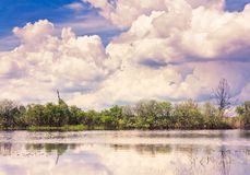 Clouds reflection on lake. Royalty Free Stock Image