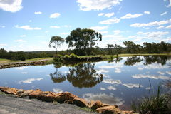 clouds reflexionstrees Arkivbilder