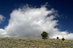 Clouds rise over the fields of Montana. Cloud formations rise up over the fields of Big Sky Country, Montana Stock Photo