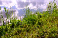 Clouds in the river. Clouds are reflected in the river Stock Photography