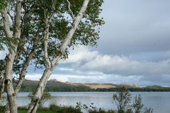 Clouds Rolling In Over Sand Dunes. Clouds and Birch Tree Over Little Glen Lake, Sand Dunes Stock Images