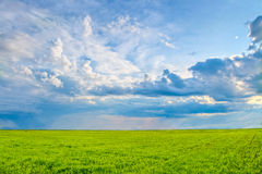 Clouds in the skies Royalty Free Stock Photo