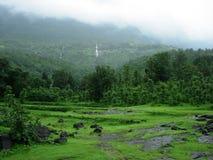 clouds skogen över regn Arkivfoto