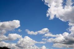 clouds skogen Arkivfoto