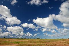 Clouds on sky. During sunny day Royalty Free Stock Photography