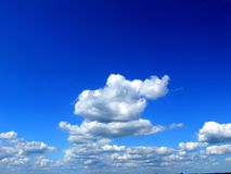 Clouds on sky. Clouds scattered in the sky Stock Photos