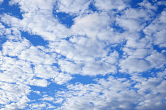 Clouds and sky. Background of clouds and sky Royalty Free Stock Photos