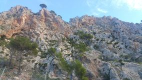 Mallorca Vegetation West Coust Royalty Free Stock Images
