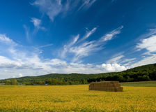 Clouds sky meadow and mountian Landscape   Stock Images
