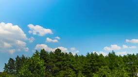Clouds in the sky moving above the trees stock footage