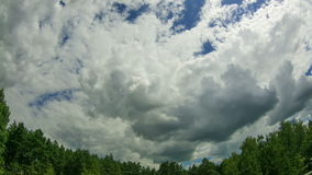 Clouds In The Sky Moving Above The Trees stock video footage
