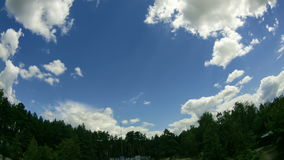 Clouds In The Sky Moving Above The Trees. Time lapse. Clouds In The Sky Moving Above The Trees. Above the tall green three smoothly moving white, gray rain stock video footage