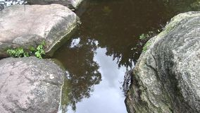 Clouds in the sky reflected in the pond of a landscaped Japanese garden in Australia. stock footage
