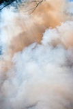 Clouds of smoke. Photo of colorful clouds of smoke Royalty Free Stock Photo