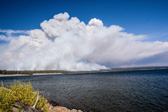 Forest Fire at Lake Yellowstone Stock Photo