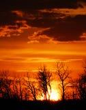 clouds solnedgång för älgösky Royaltyfri Bild