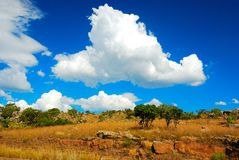 Clouds (South Africa). Sky and clouds in South Africa Royalty Free Stock Photo