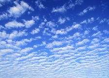 Clouds. Striated white clouds background on blue sky Stock Photos