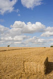 Clouds in sunny blue sky over straw bale in wheat field Royalty Free Stock Photography