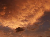 Clouds at sunset. Stock Images