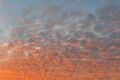 Clouds at Sunset. Beautiful Colourful Clouds at Sunset Royalty Free Stock Images