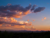 Clouds and Sunset or Sunrise with Silhouette Cactus. In the Sonoran Desert Royalty Free Stock Photography