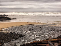 Clouds and surf. A cold winter cloudy sky over the long waves of a sandy beach on the Oregon coast Stock Image