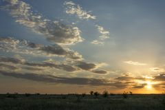 Clouds surround the sun. At sunset in August Stock Photography