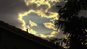 Clouds and trees blowing in wind. Evening scene of clouds and leaves blowing in the wind above rooftop stock video