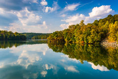 Clouds and trees reflecting in Prettyboy Reservoir, Baltimore Co Royalty Free Stock Image
