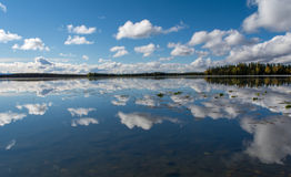 Clouds and trees reflections on flat water Stock Photography