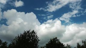 Clouds and Trees Time Lapse. Video stock video footage