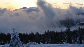 Clouds Upward Movement above Winter Mountains. Clouds upward movement above the spruce forest in winter mountains.  There is slight twitch camera because of stock footage