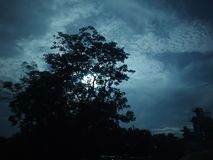 Clouds after the weather of the trees. And various cloud formations royalty free stock images