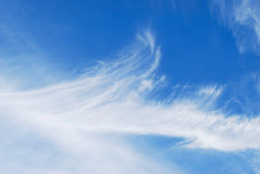Clouds. White air clouds are in blue sky Stock Images