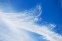Clouds. White air clouds are in blue sky Royalty Free Stock Photo
