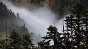Clouds woods Stock Photos