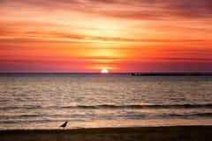 Cloudscape в восходе солнца Стоковое фото RF