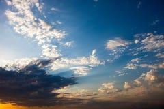 Cloudscape с летящей птицей Стоковое Фото
