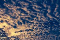 cloudscape 与月亮的每夜的天空在树后 户外在晚上 库存图片