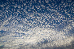 Cloudscape. In white and blue sky Stock Photography