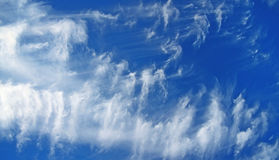 Cloudscape. A photography of a blue and white cloudscape Royalty Free Stock Photo