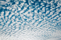 Cloudscape With Altocumulus Clouds Royalty Free Stock Photo