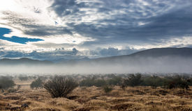 Cloudscape após a chuva Fotografia de Stock
