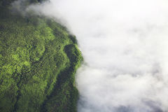Cloudscape au-dessus de forêt Photo stock