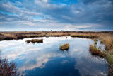 Cloudscape on blue sky over swamps Royalty Free Stock Photo